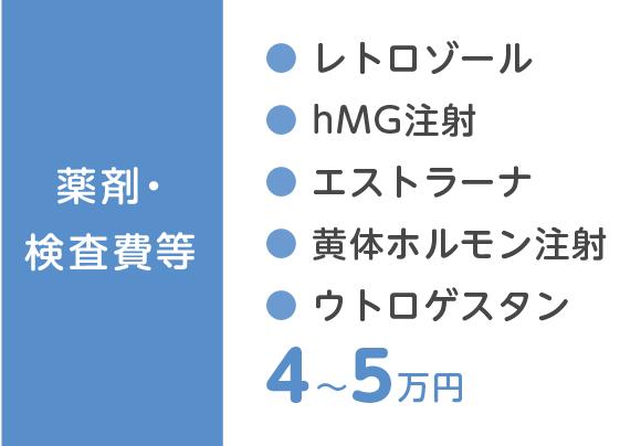 薬剤・検査費等 レトロゾール・hMG注射・エストラーナ・黄体ホルモン注射・ウトロゲスタン 4~5万円